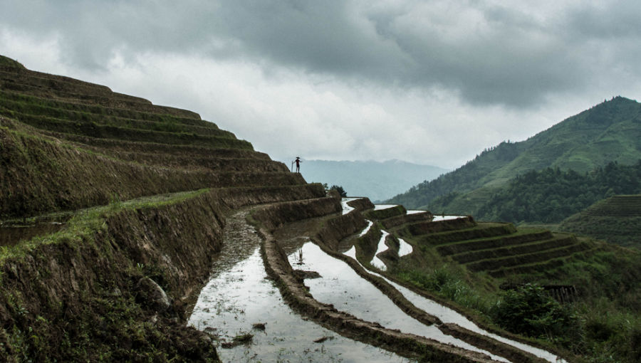 itinéraire chine 1 mois -rizières de Longsheng