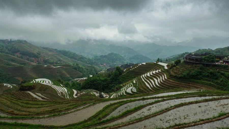 Les rizières en terrasse de Longsheng