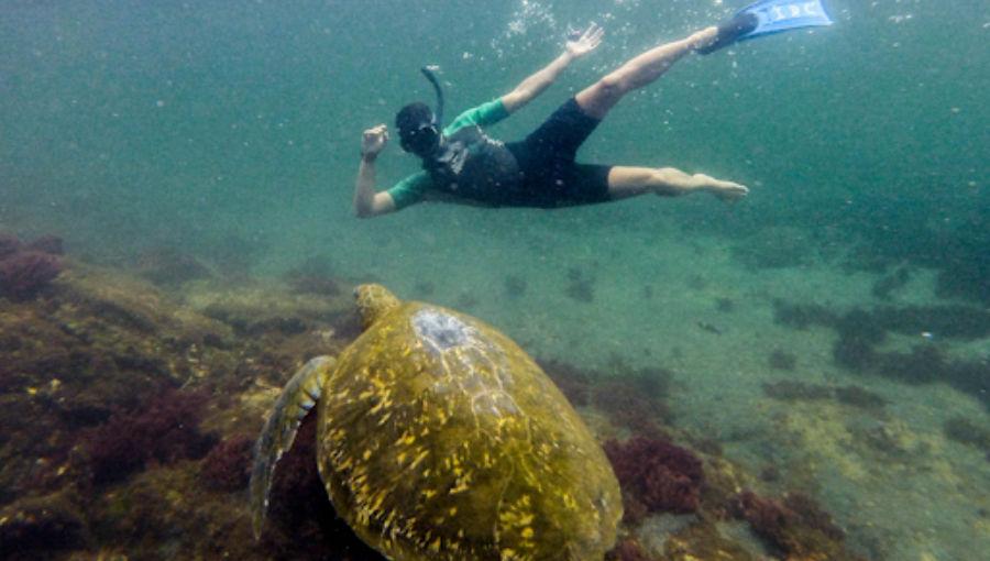 îles galapagos pas cher