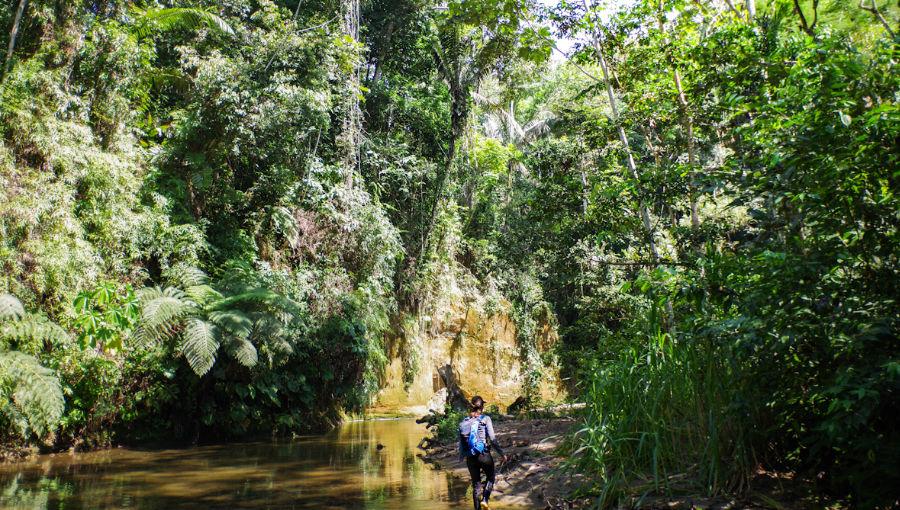 visiter l'Amazonie en Equateur